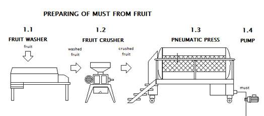 Подготовка сусла для сидра из фруктов