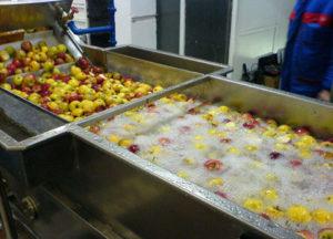 Zařízení na mytí ovoce