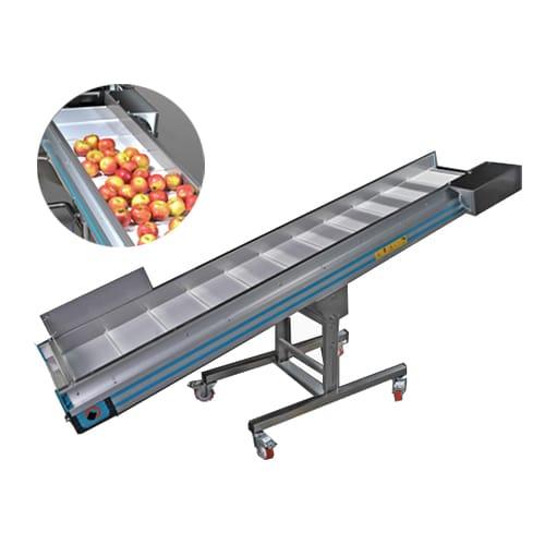 Конвейеры для сортировки фруктов